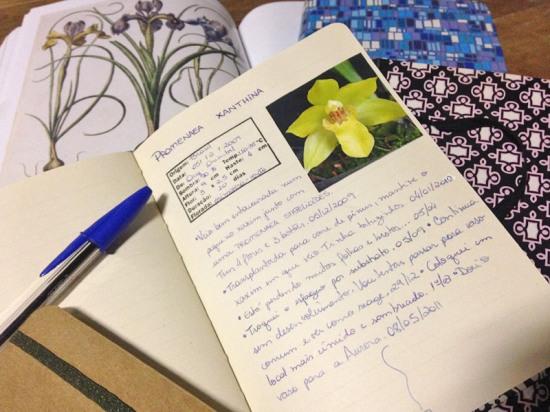 Agenda-Orquideas